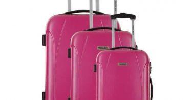 valise travel one rose